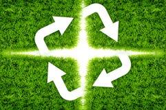 Erba verde delle frecce Fotografie Stock Libere da Diritti