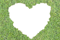 Erba verde di cuore Fotografie Stock Libere da Diritti