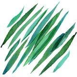 Erba verde dipinta a mano dell'acquerello Fotografia Stock Libera da Diritti