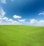 Erba verde e cielo fotografia stock