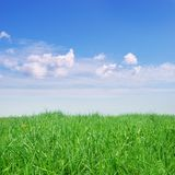 Erba verde e cielo blu immagini stock