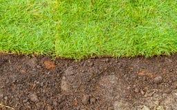 Erba verde e paesaggio marrone del suolo Fotografia Stock Libera da Diritti