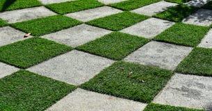 Erba verde e pavimento nel modello della scacchiera Fotografia Stock