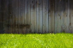 Erba verde e rete fissa Fotografie Stock