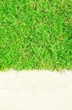 Erba verde e sabbia bianca Immagine Stock