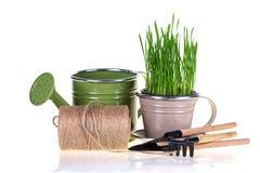 Erba verde e strumenti di giardino Immagine Stock Libera da Diritti