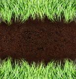 Erba verde e suolo Fotografia Stock