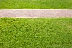 Erba verde e vicolo pavimentato in parco Fotografia Stock Libera da Diritti