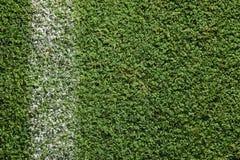 Erba verde fresca del campo di football americano immagine stock libera da diritti