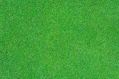 Erba verde intenso Immagine Stock