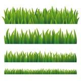 Erba verde, isolata su fondo bianco Fotografia Stock Libera da Diritti