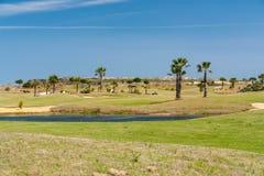 Erba verde, lago e palme ad un campo da golf un giorno di estate con chiaro cielo blu immagini stock