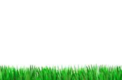 Erba verde per gli ambiti di provenienza su bianco Fotografie Stock Libere da Diritti