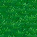 Erba verde, senza cuciture Fotografie Stock Libere da Diritti