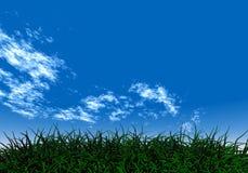 Erba verde sotto un cielo blu Immagini Stock