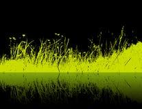 Erba verde su priorità bassa nera. Vettore Fotografia Stock