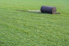 Erba verde usuale in rotolo sul prato inglese Fotografie Stock Libere da Diritti