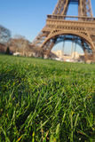 Erba vicino alla torre Eiffel Fotografia Stock Libera da Diritti