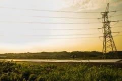 Erbacce del bordo della strada alla luce solare di pomeriggio di estate Immagini Stock