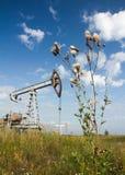 Erbacce del campo e pompa di olio Fotografia Stock Libera da Diritti
