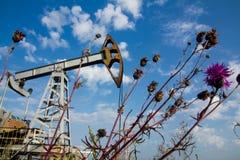 Erbacce del campo e pompa di olio Immagine Stock Libera da Diritti