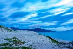 Erbacce sul costiero con il fondo del cielo blu immagini stock