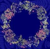 Erbario con i wildflowers, rami, foglie in un cerchio Botanica su un fondo blu, cartolina d'auguri, corona royalty illustrazione gratis