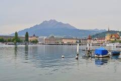 Erbaspagna, Svizzera Immagine Stock