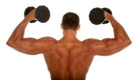 Erbauer der muskulösen Karosserie Lizenzfreie Stockbilder