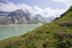 Erbe alpine, Salisburgo, Austria Immagini Stock Libere da Diritti