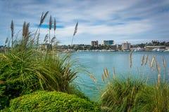 Erbe alte e vista del porto, vedute dall'isola di lido, in nuovo Fotografia Stock