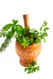 Erbe aromatiche Immagini Stock