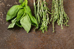 Erbe aromatiche assortite (basilico, timo, rosmarini) Immagine Stock Libera da Diritti