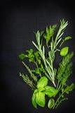 Erbe aromatiche fresche con le gocce di acqua su un fondo nero, a Immagini Stock