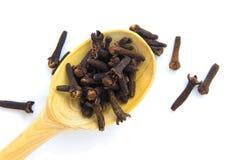 Erbe asciutte dei chiodi di garofano Fotografia Stock Libera da Diritti