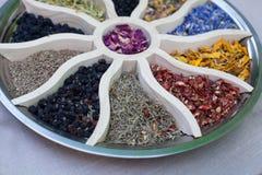 Erbe, assortimento della tisana e bacche sani Fiore e tisana immagine stock