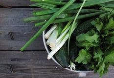 erbe casalinghe fresche per le insalate Fotografie Stock Libere da Diritti