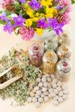 Erbe curative differenti in bottiglie di vetro, fiori Immagine Stock