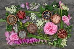 Erbe curative e fiori Fotografia Stock Libera da Diritti