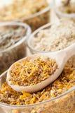 Erbe curative in tazze di vetro e cucchiaio di legno, medicina di erbe Fotografie Stock