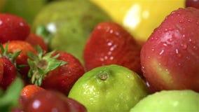 Erbe del fondo, frutta e verdure succose e fresche su ghiaccio stock footage