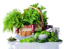 Erbe di cottura verdi su fondo bianco Fotografia Stock
