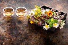 Erbe e fiori per tè curativo di erbe Fotografia Stock Libera da Diritti