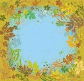 Erbe e foglie di ÑŒVarious del 'del ‡ Ð°Ñ di ПÐ?Ñ che volano intorno Struttura di autunno Fotografia Stock