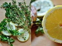 Erbe e limone per il pesce di condimento Immagine Stock Libera da Diritti