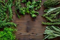 Erbe e pianta fresche di secchezza per l'alimento della spezia sullo spazio di legno di vista superiore del fondo dello scrittori Immagini Stock Libere da Diritti