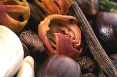 Erbe e spezie aromatiche Fotografia Stock