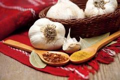 Erbe ed aglio fresco Fotografie Stock