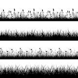 Erbe, fiori ed insieme selvaggi senza cuciture di vettore delle siluette dell'erba Immagini Stock