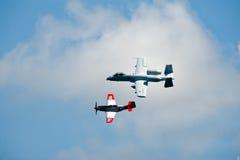 Erbe-Flug Lizenzfreies Stockbild